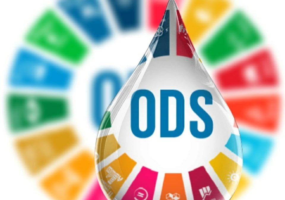 Los ODS y la Agenda 2030 para el Desarrollo Sostenible. La importancia del ODS 8 (Trabajo Decente) para las Agendas Nacionales de Desarrollo